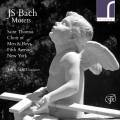 Bach : Motets. Scott.