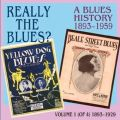 Really the Blues? A Blues History, vol. 1 (1893-1929).